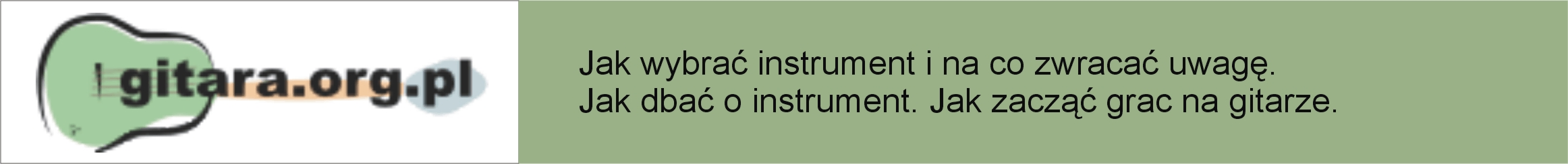 gitara_org